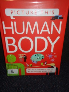 Picture this - Human Body